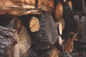Was genau ist Holz?